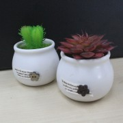 Decorative Gift Promotion Home Office Artificial Cactus Pot