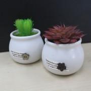 Decorative Gift Promotion Home Office Artificial Cactus Pot
