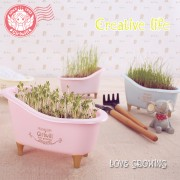 DIY Indoor Plants Bathtub Set Small Garden Plant Door Gift Wedding Event Dinner Workshop