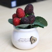 Mini Artificial Berry Decorative for Home Room Office Restaurant Hotel