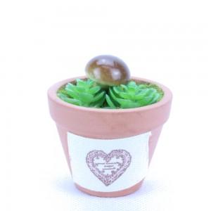 Mini Mushroom In Terracotta Pot Indoor Office Home Room Decoration